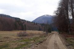 Inceput-traseu-Valea-Berii-1