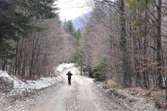 Inceput-traseu-Valea-Berii-3