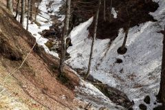 Valea-Berii-1