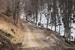 Valea-Berii-4