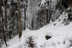 Traseu-Valea-Arpasului-Piciorul-Podragului-Cabana-Turnuri-6